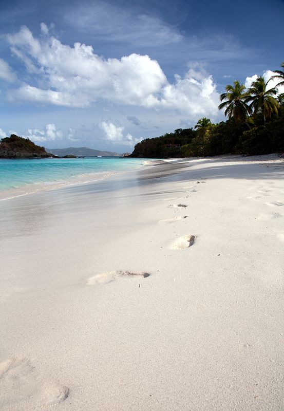Footsteps in Paradise